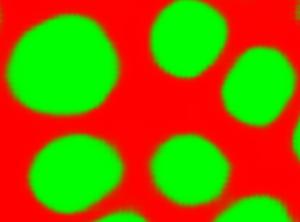 tuble-10-13799-02-4_prob-sub